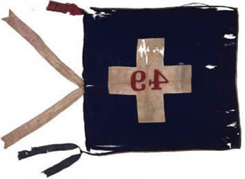49th Regiment Flag