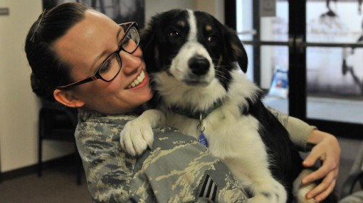 Senior Airman Sara Schreiber of the 174th Attack Wing Public Affairs office spends time with Spicer the dog during his visit to the base March 4 2017. Spicer is the 174th Attack Wings Therapy dog.