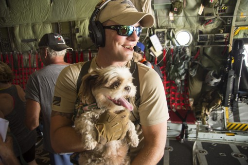 New York Air National Guard Capt. William Hall a HC-130 Pilot with the 102nd Rescue Squadron helps bring an evacuees service dog on board an HC-130 headed to San Juan Puerto Rico on Sept. 10 during an evacuation mission. The New York Air National Guards 1